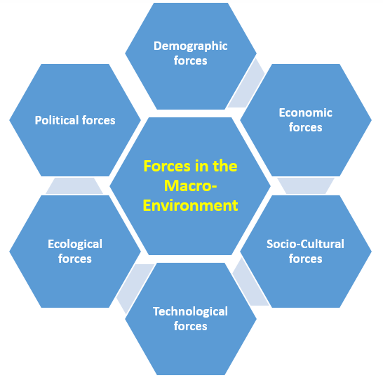 The Macro Environment - Six Forces in the Environment of a Business
