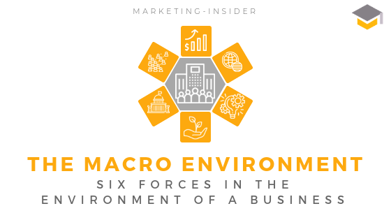 The Macro Environment - Six Forces (DESTEP)